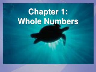 Chapter 1: Whole Numbers