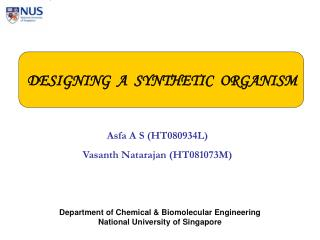 DESIGNING  A  SYNTHETIC  ORGANISM
