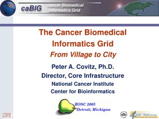 The Cancer Biomedical Informatics Grid From Village to City
