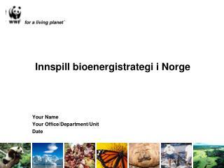 Innspill bioenergistrategi i Norge