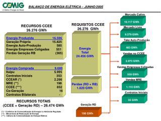 BALANÇO DE ENERGIA ELÉTRICA – JUNHO/2005