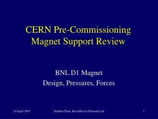 CERN Pre-Commissioning Magnet Support Review