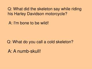 Q: What did the skeleton say while riding  his Harley Davidson motorcycle?