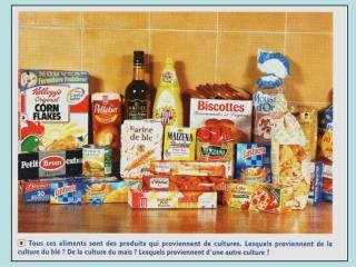 PARTIE C :  DES PRATIQUES AU  SERVICE  DE L ALIMENTATION  HUMAINE.