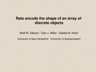 Rats encode the shape of an array of  discrete objects