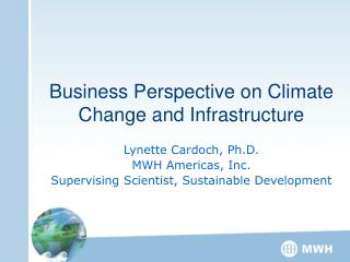 Business Perspective on Climate Change and Infrastructure