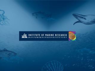 Erfaringer fra tobisfisket i 2012
