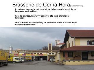 Brasserie  de Cerna Hora /pivnice/brewery