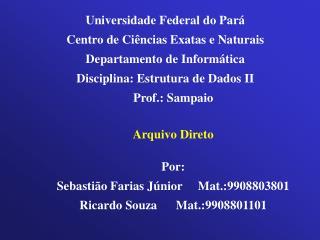 Universidade Federal do Pará Centro de Ciências Exatas e Naturais Departamento de Informática