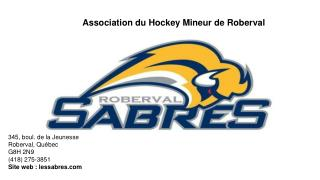 Association du Hockey Mineur de Roberval