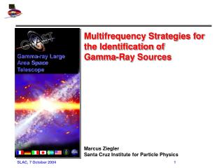 Multifrequency Strategies for the Identification of  Gamma-Ray Sources Marcus Ziegler