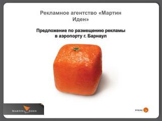 Рекламное агентство «Мартин Иден» Предложение по размещению рекламы в аэропорту г. Барнаул