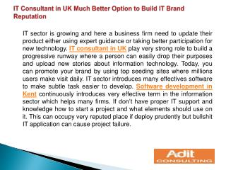 IT Consultant in UK Much Better Option to Build IT Brand Rep