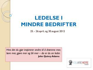 LEDELSE I                               MINDRE BEDRIFTER