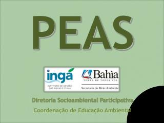 Diretoria Socioambiental Participativa Coordenação de Educação Ambiental