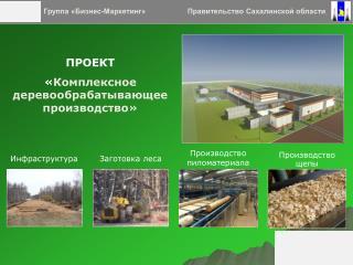 ПРОЕКТ « Комплексное деревообрабатывающее производство»