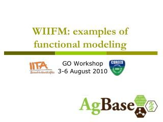 WIIFM: examples of functional modeling