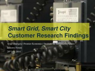 Arup | Energeia | Frontier Economics | Institute for Sustainable Futures Industry Forum