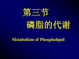 第三节       磷脂的代谢 Metabolism of Phospholipid