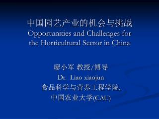 中国园艺产业的机会与挑战 Opportunities and Challenges for  the Horticultural Sector in China