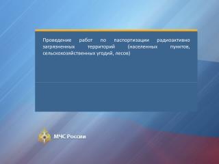 Заказчик  -  Управление организации программно-целевого планирования МЧС России