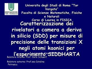 """Universita degli Studi di Roma """"Tor Vergata"""" Facolta di Scienze Matematiche, Fisiche e Naturali"""