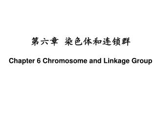 第六章 染色体和连锁群 Chapter 6 Chromosome and Linkage Group
