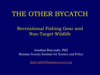 THE OTHER BYCATCH Recreational Fishing Gear and  Non-Target Wildlife