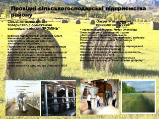 Провідні сільськогосподарські підприємства району