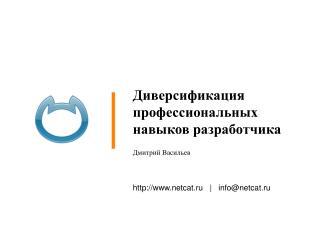 Диверсификация профессиональных навыков разработчика Дмитрий Васильев