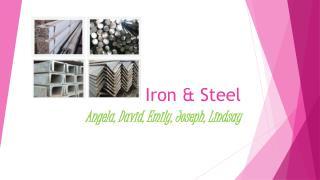 Iron & Stee l