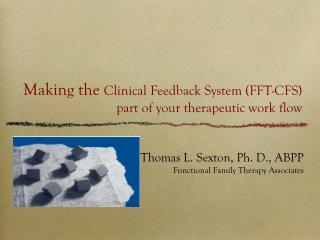 Making the  Clinical Feedback System (FFT-CFS) part of your therapeutic work flow