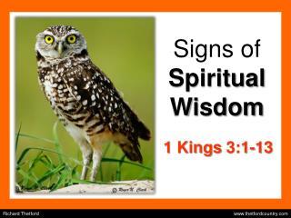Signs of Spiritual Wisdom