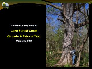 Alachua County Forever Lake Forest Creek Kincade & Tabone Tract March  22, 2011