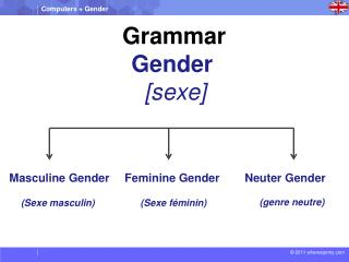 Grammar  Gender   [ sexe ]