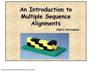 An Introduction to Multiple Sequence Alignments