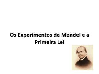 Os Experimentos de Mendel e a Primeira Lei