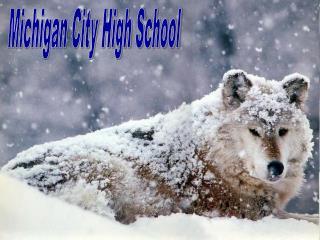 Michigan City High School