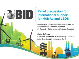 Panel discussion for international support for NAMAs and LEDS