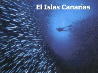 El Islas Canarias