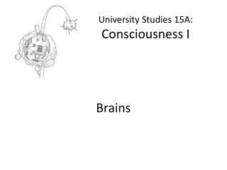 University Studies 15A: Consciousness I