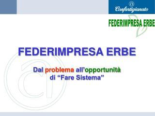 """FEDERIMPRESA ERBE Dal  problema  all' opportunità di """"Fare Sistema"""""""