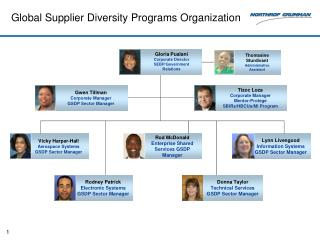 Global Supplier Diversity Programs Organization