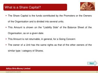 What is a Share Capital?