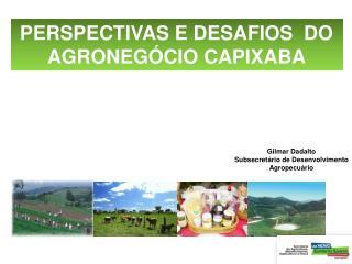 PERSPECTIVAS E DESAFIOS  DO AGRONEGÓCIO CAPIXABA