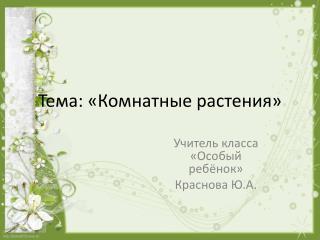 Тема: «Комнатные растения»