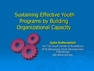 Sustaining Effective Youth Programs by Building Organizational Capacity