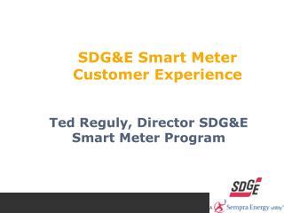 SDG&E Smart Meter  Customer Experience