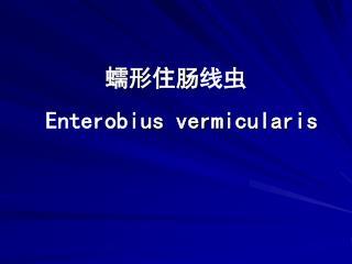 蠕形住肠 线 虫 Enterobi us vermicularis