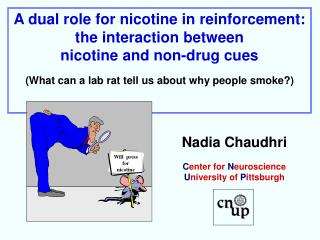 A dual role for nicotine in reinforcement:  the interaction between  nicotine and non-drug cues  What can a lab rat tell